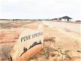 Lot 14 Pine Cone - Photo 2