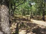 239 Mustang Springs - Photo 1