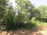 TBD County Road 405 - Photo 12