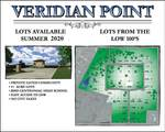 2701 Veridian Point Drive - Photo 3