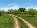 TBD County Road 225 - Photo 15