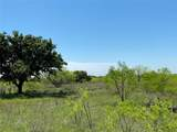 TBD County Road 225 - Photo 23