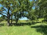 TBD County Road 225 - Photo 3