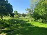 TBD 71 Beene Creek Trail - Photo 16