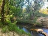 TBD 71 Beene Creek Trail - Photo 8