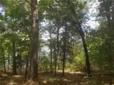 9356 Safari Bluff - Photo 1