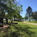 325 Comanche Trail - Photo 4
