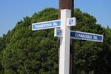 43147 Cedar Crest Dr & Fringewood Drive - Photo 9