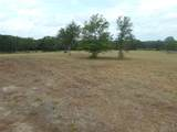 8605 Star Hollow Road - Photo 12
