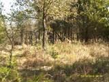 11 A Vista Oak - Photo 19