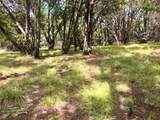 Lot585 Canyon Wren Loop - Photo 13