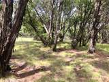 Lot585 Canyon Wren Loop - Photo 14