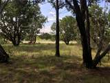 Lot585 Canyon Wren Loop - Photo 16