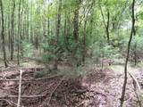 5 Acre County Road 4115 - Photo 12