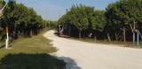 1255 County Road 2004 - Photo 31
