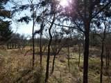 59 B Vista Oak - Photo 12
