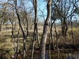 59 B Vista Oak - Photo 22