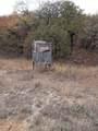 7601 County Road 550 - Photo 17