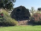 7437 Royal Winchester Drive - Photo 10