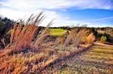 Lot 6A Palmilla Drive - Photo 3