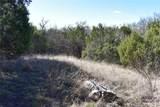 1797 Timberwolf Trail - Photo 10