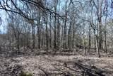 1797 Timberwolf Trail - Photo 11