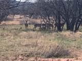 TBD Bacacita Farms Road - Photo 1