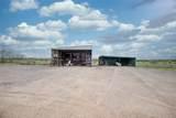 6495 Coyote Court - Photo 39