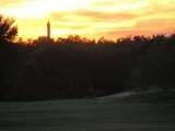 34061 Stonewood Loop - Photo 8