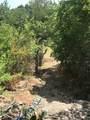 6996 Shamrock Drive - Photo 8