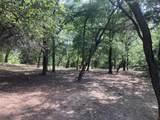 1339 Overlook Circle - Photo 11