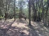 1339 Overlook Circle - Photo 9