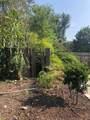 8509 Treetop Court - Photo 6
