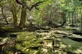 1420 Mimosa Court - Photo 23