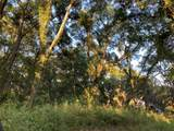 1871 Co Road  252 - Photo 4