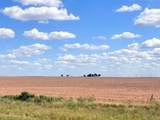120 Acres Fm 1043 - Photo 3