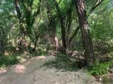 TBD 71 Beene Creek Trail - Photo 4