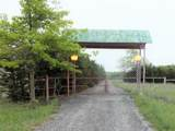 7271 County Road 424 - Photo 3