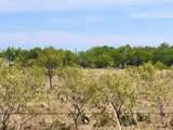 TBD County Road 627 - Photo 15