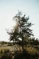 1032 Comanche County Road 343 - Photo 27