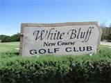 1021 White Bluff Drive - Photo 33