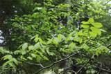 Lot378D Timber Ridge - Photo 23