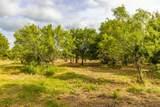 TBD 2 Ox Mill Creek Road - Photo 14