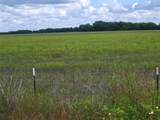 TBD County Road 697 - Photo 4