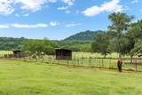 295 County Road 306 - Photo 13