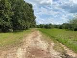 TBD County Road 1060 - Photo 9