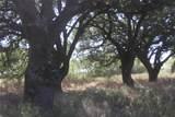 233 Private Road 920 - Photo 28