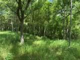 301 Mangrum Drive - Photo 6