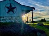 259 Double D Ranch Drive - Photo 23
