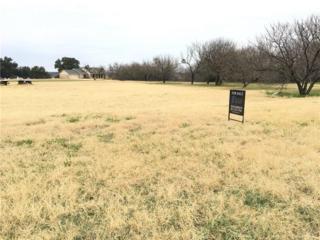 3328 Abes Landing Court, Granbury, TX 76049 (MLS #13514775) :: Clarkson Premier Team, Magnolia Realty